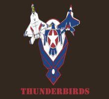 Air Force Thunderbirds F-22 Raptor by Joseph Baker