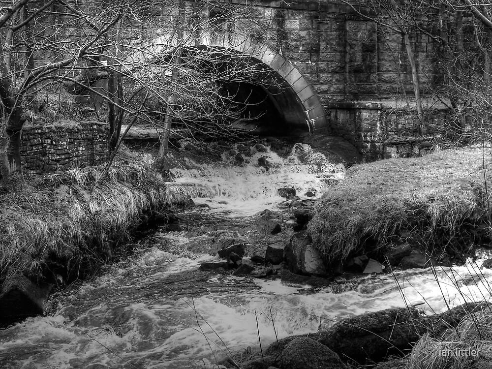 River of Barley by ian littler