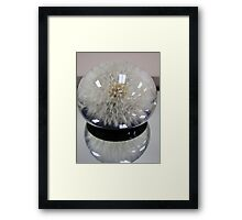 Paperweight 2 Framed Print