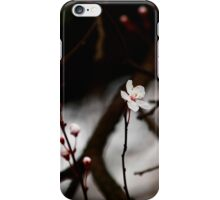 First cherry blossom iPhone case iPhone Case/Skin