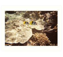 Under the Sea.. Art Print