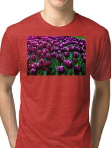 Pink and Purple Tulips Tri-blend T-Shirt