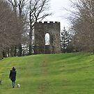 A walk in Spring Hill by MiskellyTrevor