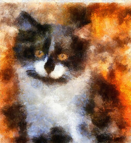 Jewels' Golden Eyed Kitten by Bunny Clarke