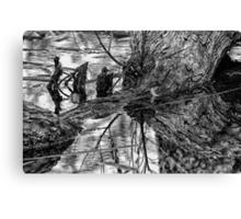 Dark Reflections Canvas Print