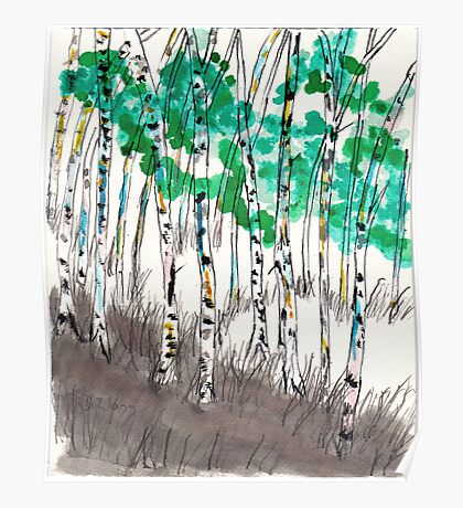 summer birches Poster