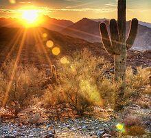 Desert Sunset by Eddie Yerkish