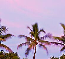 Dancing Palms by XxJasonMichaelx