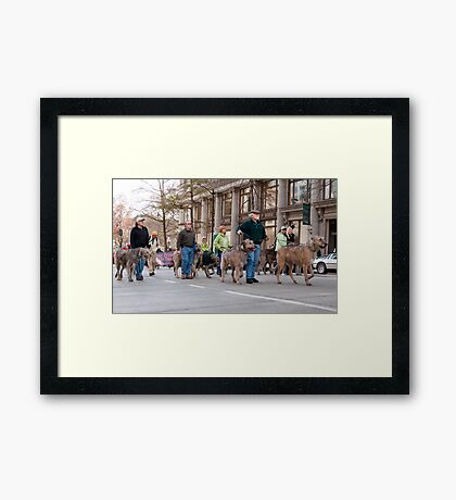Marching Hounds Framed Print