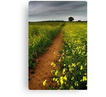 As We Walked In Fields Of Gold Canvas Print