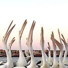 Pelican series #2 by Elisabeth Dubois