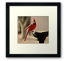 I'm Eating Out Of A WHAT? Framed Print