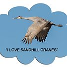 I LOVE SANDHILL CRANES by Thomas Young