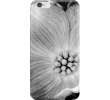 Dogwood Blossom iPhone Case/Skin