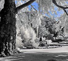 Eastern Gardens by peterperfect