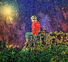 Huckleberry Finn and the Stars by Donnie Voelker