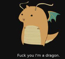 Dragonite by Ocarina04