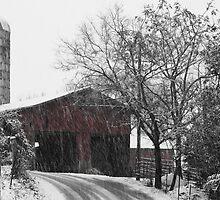 Winter Storm by XxJasonMichaelx