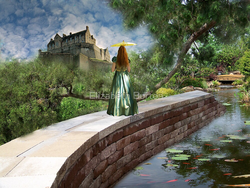 A View Like No Other by Elizabeth Burton