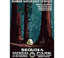 Vintage WPA Camping in Sequoia National Park Photographic Print