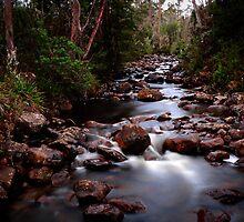Mountain Stream by Emma  Gilette