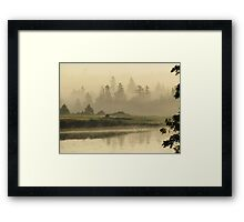 Misty Green Framed Print