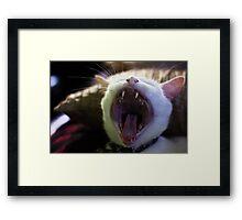 Cat Roar Framed Print