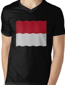 Indonesia flag Mens V-Neck T-Shirt