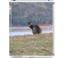 Curious Kangaroo at Wyangala iPad Case/Skin