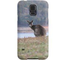 Curious Kangaroo at Wyangala Samsung Galaxy Case/Skin
