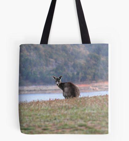 Curious Kangaroo at Wyangala Tote Bag