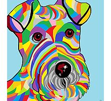 Wire Fox Terrier Photographic Print