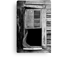 Day Fifty-Two Canvas Print