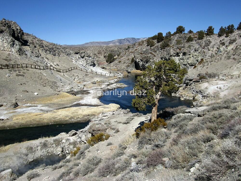 Hot At Hot Creek by marilyn diaz