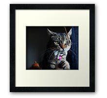 Tasha & Her Bunny Framed Print