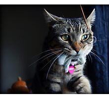 Tasha & Her Bunny Photographic Print