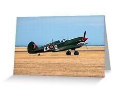 The Grey Nurse P-40 Warhawk  Greeting Card