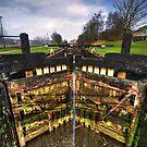 Lock 57, Leeds Liverpool Canal by inkedsandra