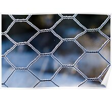 Frosty fence Poster