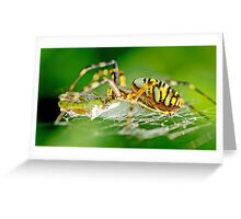 Wasp Spider Greeting Card