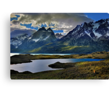 Guanacos and the Massif Canvas Print