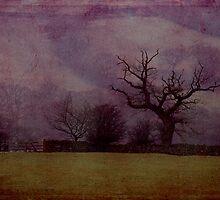 Farndale in fog by Ulla Vaereth