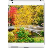Autumn in Central Park, Study 1 iPad Case/Skin