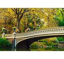 Autumn in Central Park, Study 2 Photographic Print