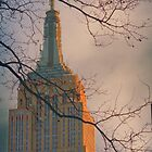 Empire State Building | New York City  by jojocraig