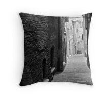 Perugia, 13 Throw Pillow