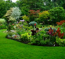 Manicured and polished garden by MarianBendeth