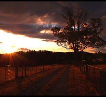 Blazing Sunset by Tyler Cochrane