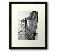 From The Fence Framed Print