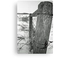 From The Fence Canvas Print